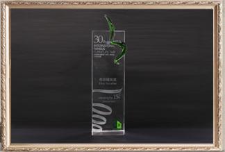 30届国际名蓝冠注册(佛山)展览会15周年庆市场精英奖